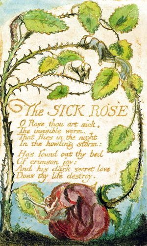William Blake - The Sick Rose, from Songs of Innocence