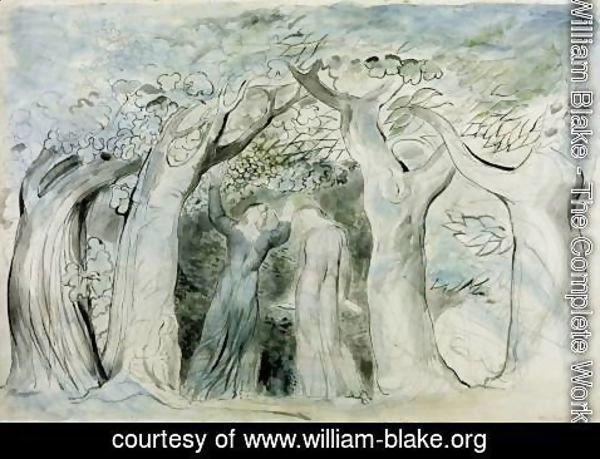 William Blake - Inferno, Canto II, 139-141, Dante and Virgil enter the wood